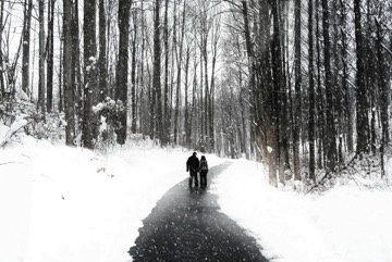 winter-walk-proposal